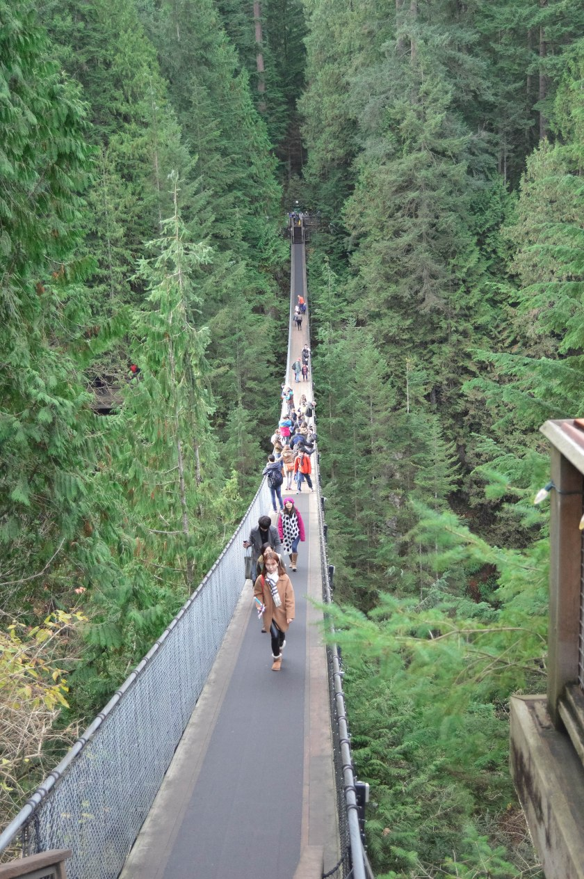 DSC_0225Capilano_Bridge_1